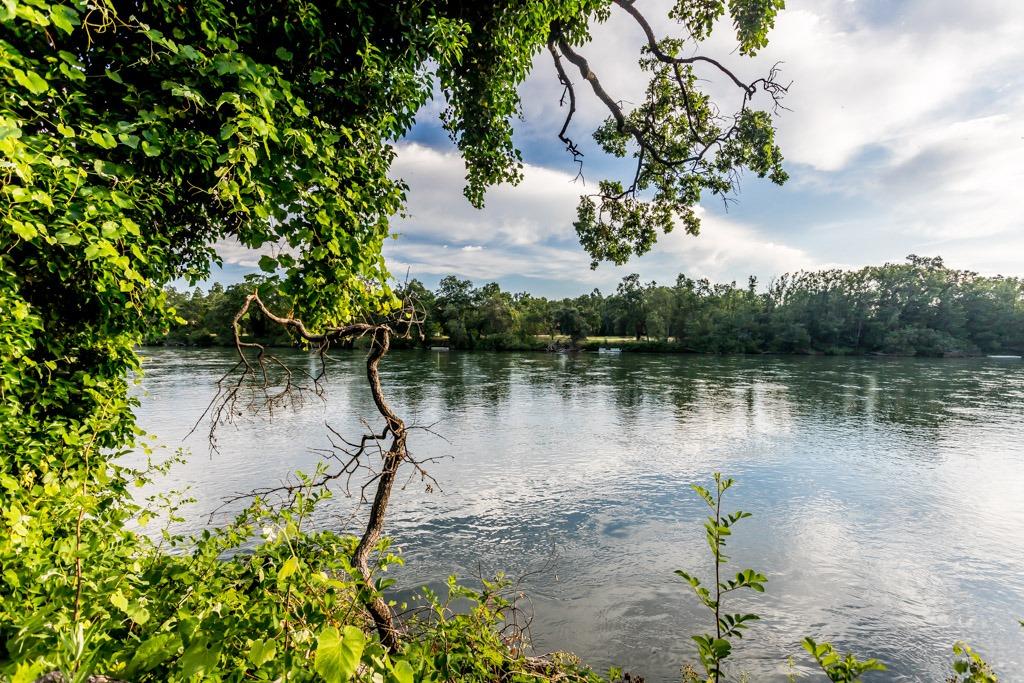 Lower Sacramento River Land