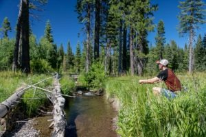Fly Fishing For Redband Trout
